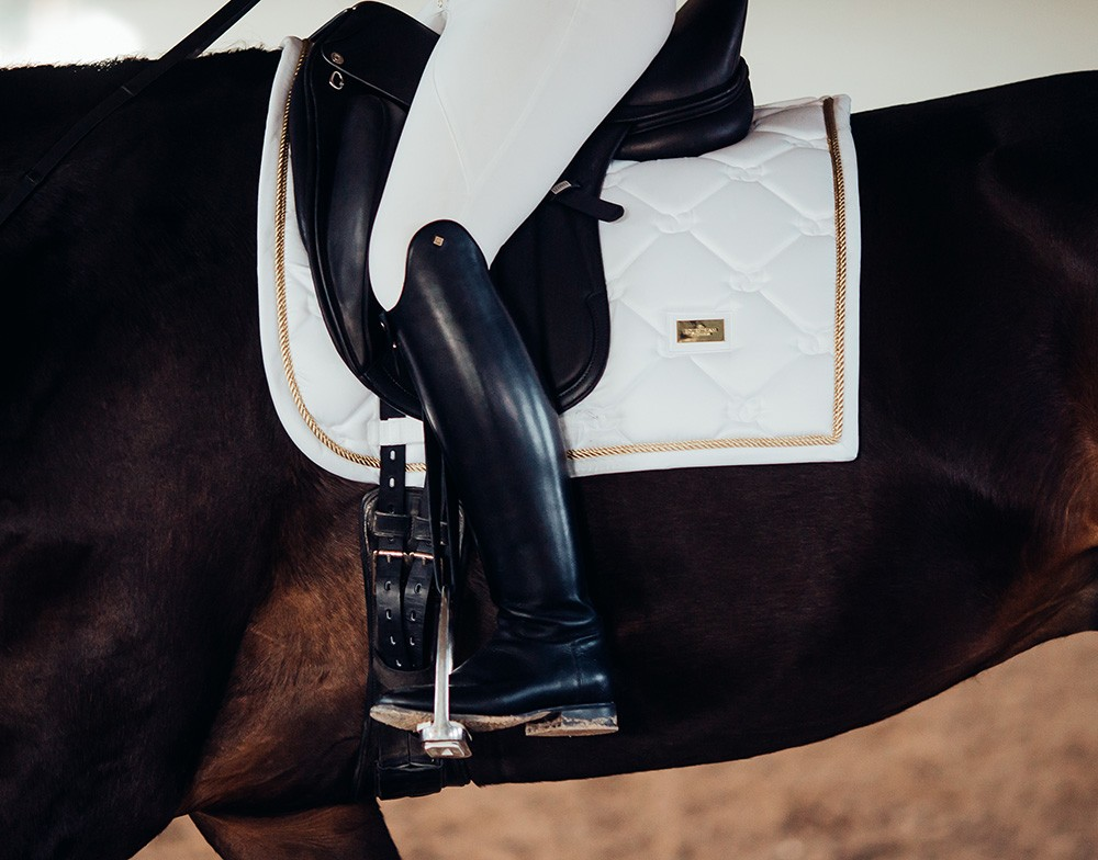 White Perfection Gold Dressage3.jpg